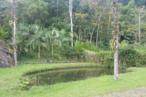 sitio-a-venda-em-paraty-bairro-corisco (2)