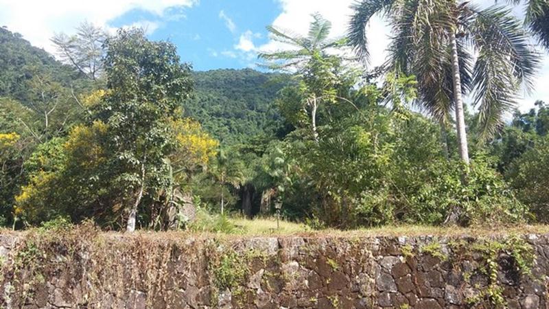 sitio-a-venda-em-paraty-bairro-corisco (22)