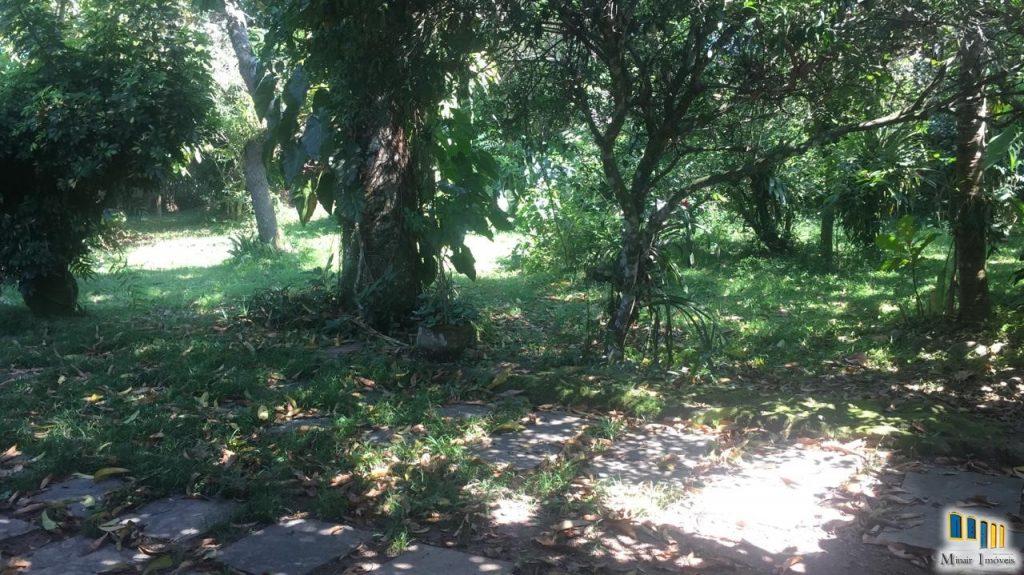 Terreno 41 – Terreno a venda em Paraty no valorizado bairro Caborê