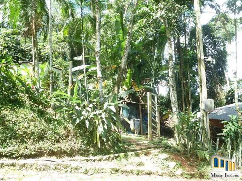 terreno a venda em paraty na localidade da praia grande com uma charmosa casa de pau a pique (12)