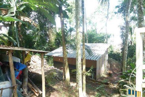 terreno a venda em paraty na localidade da praia grande com uma charmosa casa de pau a pique (14)