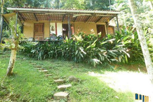 terreno a venda em paraty na localidade da praia grande com uma charmosa casa de pau a pique (3)