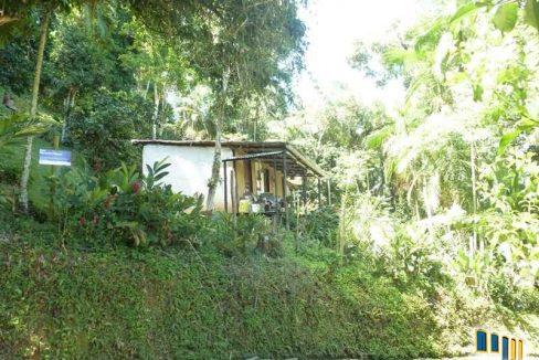 terreno a venda em paraty na localidade da praia grande com uma charmosa casa de pau a pique (4)