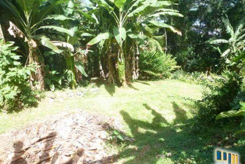 terreno a venda em paraty na localidade da praia grande com uma charmosa casa de pau a pique (8)