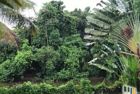 casa a venda em paraty as margens do rio pereque-acu (33)