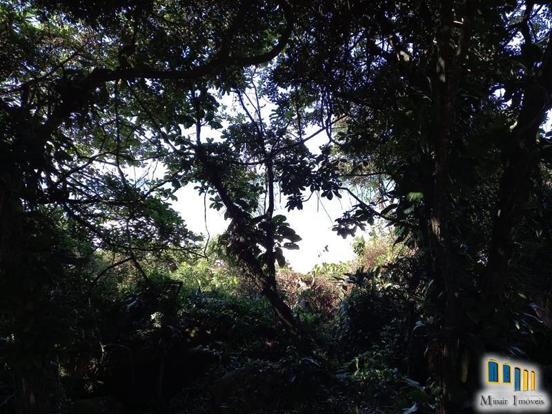 terreno a venda em paraty na vila de trindade (2)