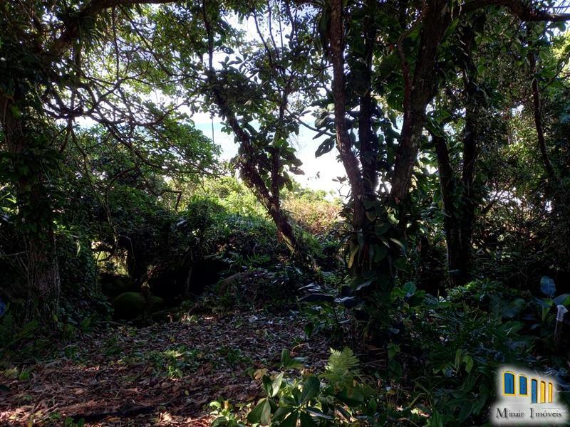 terreno a venda em paraty na vila de trindade (5)